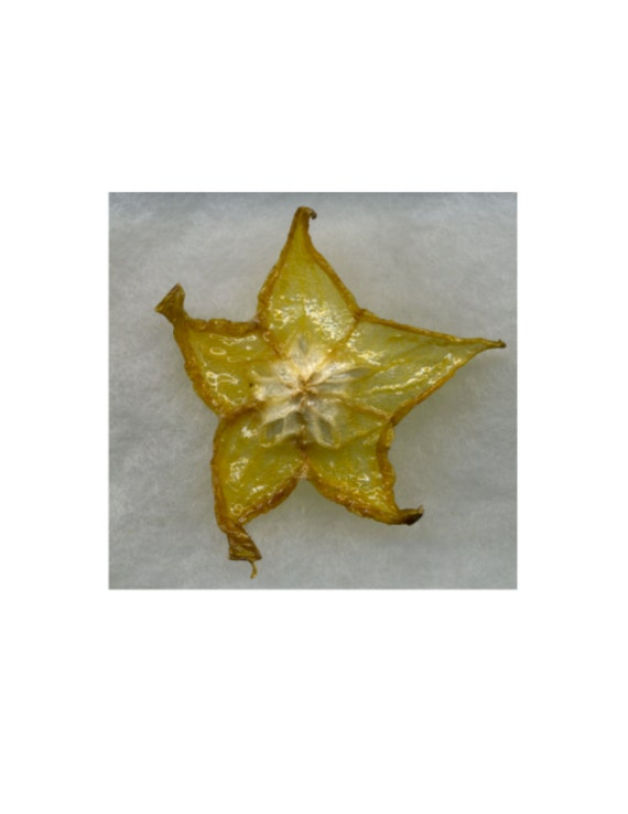 Glazed Star Fruit brooch