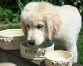 Personalized Cat or Dog Food Bowl or Water Bowl