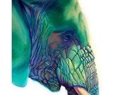 Elephant - Blue Mountain - Original Elephant PRINT 11 x 14 - By Corina St. Martin