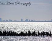 Lake Michigan Cityscape