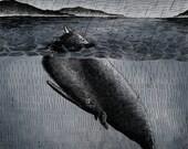 Fish and Bird Illustration Print