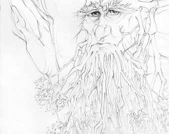 Lord of the Rings: Treebeard