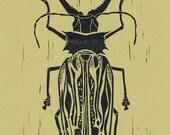 Linoleum Block Print - Staghorn Beetle