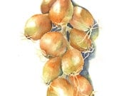 Watercolor Onion Greeting Card - Professionally Printed