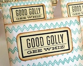 Good Golly Gee Whiz // Chevron // Zig-Zag // Turquoise // Vintage Inspired // Mini Note Cards // Set of 6