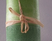 Lemongrass & eucalyptus and Spearmint decorative pillar