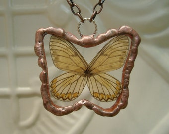 Real Wings Full Butterfly between glass Copper patina Soldered Pendant Yellow Coster butterfly Hand Soldered Birthday Gift