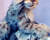 """Eldon, A Bobcat-21""""soft sculpture,jointed,armatures,glass eyes,leather realistic paws"""