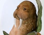 Walrus Painting - Watercolor - Archival Art Print - ocean art