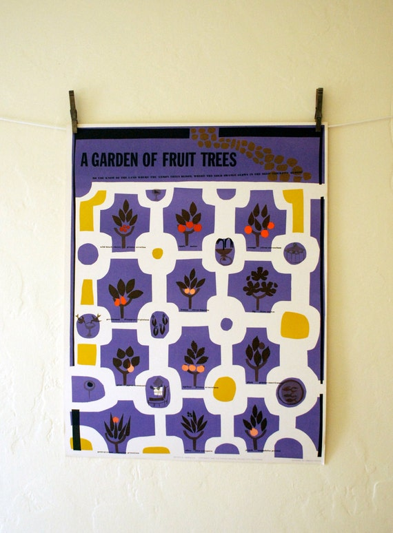 A Garden of Fruit Trees - part of the Botanical Series, Vintage 1963 poster by Osborn Woods