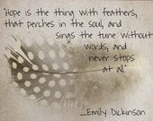 ACEO fine art giclee print of mixed media photograph guinea feather with Emily Dickinson quote