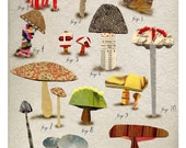 mixed media non edible mushroom botanical 2, print