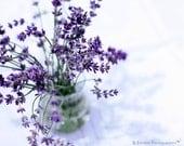 Flower Photography - Lavender Photograph - Lavender - Flowers - Flower Bouquet - Fine Art Photography Print - Purple White Home Decor
