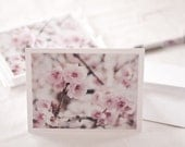 Flower Photography Cards - Stationery -  Fine Art Photography Cards - Spring Cherry Blossoms - Pink White Note Cards