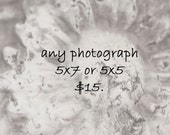 Fine Art Photograph - Choose Any 5x7 or 5x5 Print - Beach Cottage Decor - Home Decor