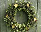 Spring Wreath - Osage Blooms -  Variegated Boxwood, Osage Orange & Evergreen Lilac