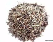 Organic Tulsi - Sacred Basil