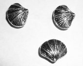Sea Shell Water Clam Mollusk 3 pc Silver Pewter Charm Bead