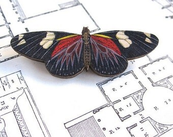 Black Butterfly Brooch Insect Jewelry