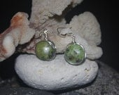 Wire Wrapped Chrysoprase Earrings