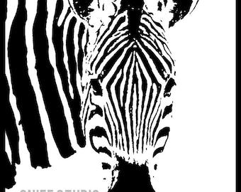 Zebra Print - 11x14 Inch Print