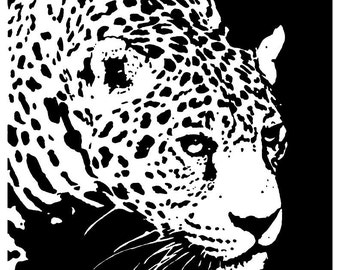 Leopard Print - 11x14 Inch Print