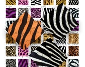 Craft supplies Scrapbooking Digital collage sheet Animal print color images Square 1 X 1 inches No 21010162
