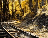 Just Around The Turn - Remote Railroad Tracks Located In Oregon Fine Art Nature Photography Print (8X12)