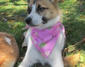 Pink Hawaiian Dog Scarf