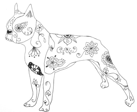 boston terrier coloring pages - items similar to sugar skull boston terrier pen and ink