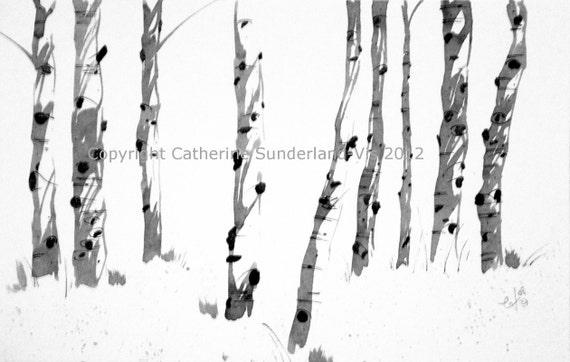 "Ink Drawing of Colorado Aspen - ""Receiving Line"""