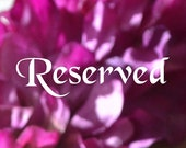 Reserved listing for Wendy