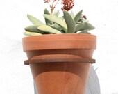 Garden Wall Pot Holder by bettershelter