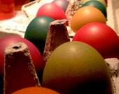 Easter Eggs - Color photography, art, Still Life, Spring season, bright, holiday - 8x10 - Fine Art Photograph
