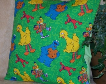 "12"" x 12"" Sesame Street  on Green with Light Green back Decorative Pillow Cover"