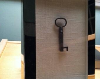 antique skeleton key in chrome frame