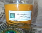 Spiced Citrus Soy Container Candle