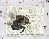 Zodiac Sign Taurus Constellation, vintage celestial map 10x16 inch (32x40 cm) on Fine Art Canvas