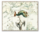 Piscis Notius and Grus Constellation, vintage celestial map printed on parchment paper. Buy 3 and get 1 FREE