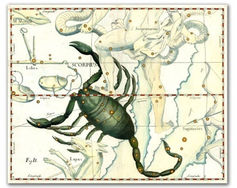 "13x16"" Zodiac Sign Scorpio Scorpius Constellation, vintage celestial map printed on parchment paper., nursery room decor, wall art"