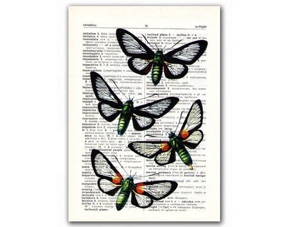 Amazing Butterflies, vintage illustration printed on Upcycled English Dictionary page. Buy 3 and get 1 FREE
