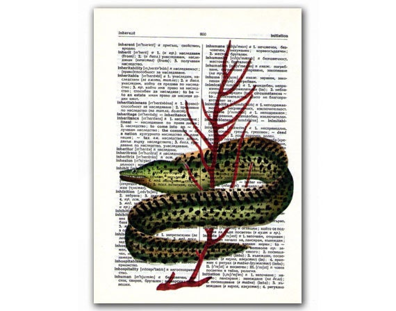 Fuzion, vintage illustration printed on Upcycled English Dictionary page. Buy 3 and get 1 FREE