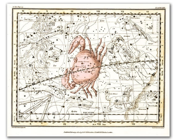 Zodiac Sign Cancer Constellation 1, vintage celestial map printed on parchment paper. Buy 3 and get 1 FREE