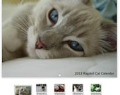 """2012 Ragdoll Cat Photo Calendar for Your Wall 11 x 8.5"""" Landscape - Coil Bound"""