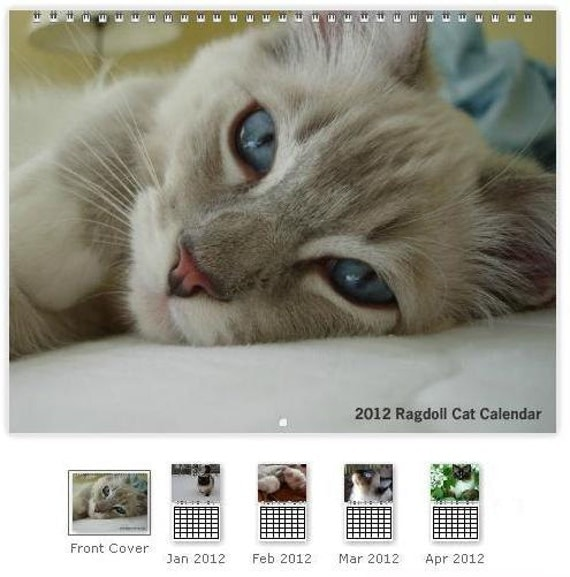 "2012 Ragdoll Cat Photo Calendar for Your Wall 11 x 8.5"" Landscape - Coil Bound"