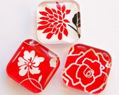 Floral Glass Magnets, Fridge Magnets, Red White, Flower Magnets, Nature, Rose, Glass Magnets
