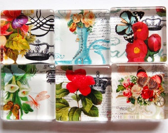 Flower Glass Magnets, Fridge Magnets, Floral Magnet, Flower Magnets, Glass Magnets, Nature