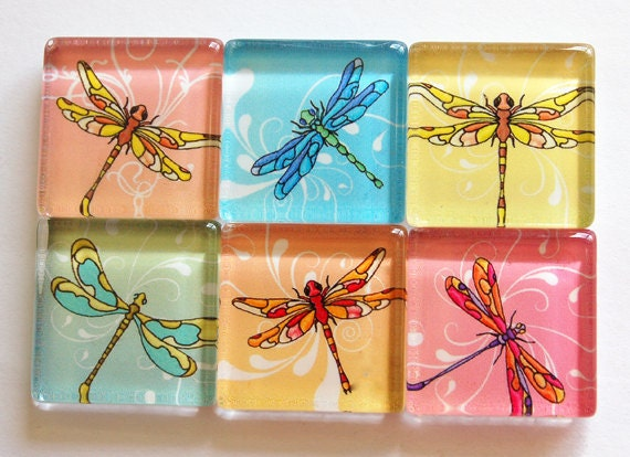 Dragonfly Glass Magnets, Fridge Magnets, dragonfly Magnet, Glass Magnets, Nature, dragonfly, dragonflies, colorful, locker magnets