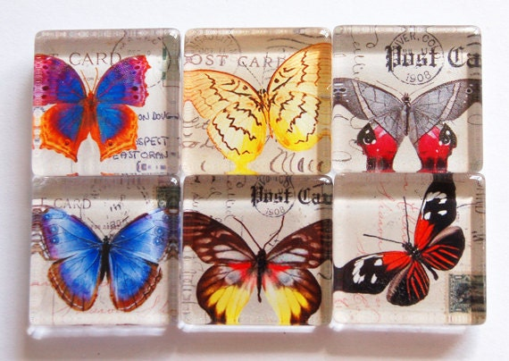 Butterfly Glass Magnets, Fridge Magnets, Nature Magnet, Butterfly Magnets, colorful