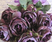 High End Dark Purple English Cabbage Roses Silk  Lot of 8